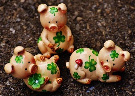 lucky-pig-1697329_1280.jpg